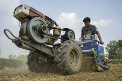 _DSC0608 as Smart Object-1 (CIMMYT) Tags: nepal csisa cimmyt maize agriculture smallholder farmer mechanization asia