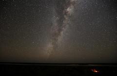 salt pan camp (wandiyali images) Tags: australiandesertexpeditions simpsondesert scientificexpedition cameltrek camel desertwalking desert stars saltpan camp milky way