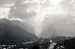 _DSC2671 (ashwin kumar) Tags: green leh ladakh kashmir himalayas rohtang la