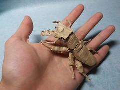Lucanus maculifemoratus by Kota Imai (Artyom Romenskiy) Tags: origami kota imai beetle fromcp lucanus maculifemoratus