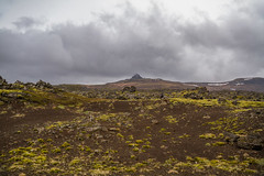 Berserkjahraun 46 (raelala) Tags: 2016 berserkjahraun snaefellsnes snaefellsnespeninsula canon1785mm crater europe europeantravel iceland icelanding2016 lava lavafield photographybyrachelgreene ringroad roadtrip scandinavia thatlalagirl thatlalagirlphotography thatlalagirlcom travel