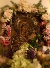 . ! (janeric2014) Tags:  jomfrumaria virginmary motherofgod