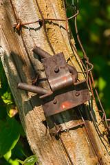 Steel on Wood (thefisch1) Tags: fence post steel rusty weathered gate latch rural kansas old flint hills oogle interesting closeup calendar nostalgic