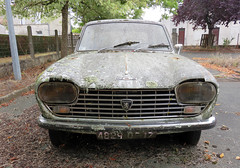 Peugeot 204 (Spottedlaurel) Tags: peugeot 204 lichen