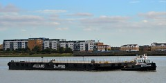 Haven Supporter + Wilcarry 1711 (2) @ Gallions Reach 12-09-16 (AJBC_1) Tags: london havensupporter dlrblog ajc newham northwoolwich londonboroughofnewham eastlondon england unitedkingdom uk ship boat vessel marineengineering nikond3200 tug tugboat collinswateragelighterage gallionspoint pontoon stantug1205 damen damenshipyardsgroup williamsshipping wilcarry1711 riverthames gallionsreach