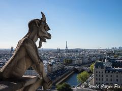 WCP-183.jpg (World Citizen Pix) Tags: paris notredame cathdrale cathedral gargouille gargoyle vigilante surveillance watch ville city seine rivire river