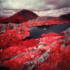 High Crag from Haystacks (Mark Rowell) Tags: infrared ir eir aerochrome haystacks highcrag cumbria lakedistrict uk hasselblad 903 swc 6x6 120 mediumformat kodak expired film