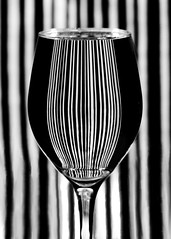 Vertical (nikagnew) Tags: blackandwhite water glass lines vertical stripes curves full refraction wineglass lookslikeabarcode