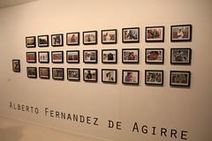 ALBERTO FERNANDEZ DE AGIRRE  (10)