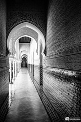End Of The Hallway (oussama_infinity) Tags: world camera people blackandwhite bw panorama white black monochrome night canon photography eos algeria photo long exposure noir european shot image infinity capital culture el palace nb exposition national photograph usm roads rue et blanc ef feedback geographic  algrie additional  alger longue  srteet   650d  oussama   tlemcen d650    canon650d telemcen mechouar canond650 palaceelmechouar