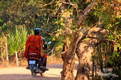 Monk - Along The Way