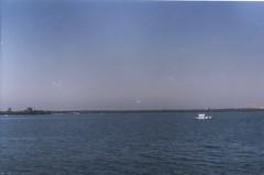 (larissanunesdealbuquerque) Tags: ocean winter sea sky film nature rio brasil riodejaneiro analog vintage freedom bay boat lomography kodak atlantic analogue analogphotography forester kodakfilm filmphotography analogphotograph filmphotograph
