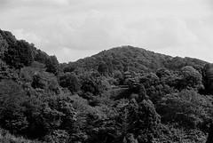 Image1705 (Negerotti) Tags: kyoto trix   kiyomizudera leicam6 r09 xenon5cmf15