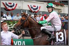 Deauville (Spruceton Spook) Tags: horses horseracing deauville belmontpark starsandstripesfestival aidenobrien belmontderbyinvitational