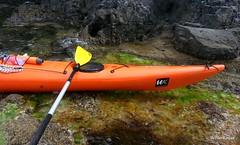 28354743992_4d16ed1336_o (Winter Kayak) Tags: associazione aziendale bergeggi decathon escursioni istruttori kayak motivazionale pacchetti sportiva teambuilder viaggio winterkayak
