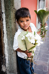20160810-DSC_2033 (cdluisalberto) Tags: flowers portrait candid outdoors guanajuato mexico streets humble white seller mexican