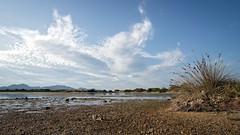 Old Salinas (Stefan Zwi. ...catching up :-)) Tags: sky landscape sale salt landschaft olbia salinemurtamaria