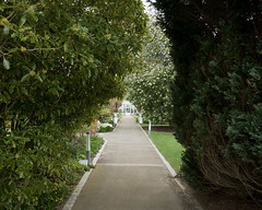 Down the Garden Path (Peter E. Lee) Tags: talbotbotanicgarden castle spring path ireland greenhouse trees roi republicofireland walledgarden 2016 ire eire malahide dublin ie