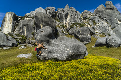 Sam the Man (~MountainHigh~) Tags: flowers newzealand sky flower nature yellow fun outside climb rocks sam outdoor kate arthurspass boom climbing johannes malchow castlehill mountainhigh