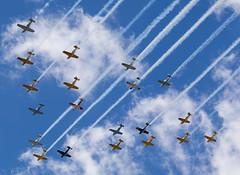 T-43 formation, Oshkosh (wwshack) Tags: airventure2016 beechcraft eaa eaaairventure kosh mentor osh oshkosh t43 usa unitedstates whittmanregional wisconsin formation
