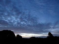 Rising moon (seikinsou) Tags: ireland westmeath summer midsummer midnight moon moonrise cloud sky whitenight tree silhouette