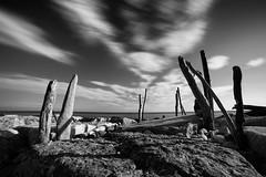 Sidelight (Mario Ottaviani Photography) Tags: sidelight clouds reefs cliffs bastone wood biancoenero bianco nero black white blackandwhite bw bn monocromo monochrome grey gray sony samyang sonyalpha gabicce italia italy landscape paesaggio