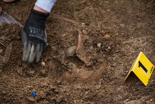 Exhumación Castroncelos (Lugo) (4)