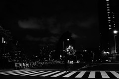 DSC01873 (Zengame) Tags: rx rx1 rx1r rx1rm2 rx1rmark2 sony zeiss bw cc creativecommons japan monochrome tokyo