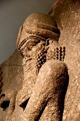 Protective Genie from Khorsabad, (Sumer and Akkad!) Tags: sargon khorsabad dursharrukin dur sharrukin mesopotamia iraq apkallu lamassu assyria neoassyrianperiod