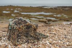 Lobster Pot On Kingsbarns Beach (KCL Images) Tags: lobsterpot beach sand kingsbarns fife standrews shells rocks sea