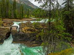 natural bridge on kicking horse river in yoho NP - BC, canada 2 (Russell Scott Images) Tags: canada britishcolumbia bc canadianrockymountains yohonationalpark naturalbridge kickinghorseriver