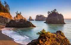Late Afternoon Light at the Beach (dezzouk) Tags: samuelboardman sceniccorridor brookings oregon coast beach sunset waves secretbeach