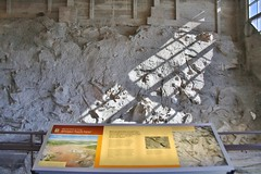 0U1A2037 Dinosaur National Monument - fossil exhibit hall (colinLmiller) Tags: 2016 utah dinosaurnationalmonument nm unitedstatesdepartmentoftheinterior us doi nps nationalparkservice interpretive sign
