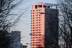 Pink highrise (jtunkelo) Tags: pink sunset color building sunrise finland helsinki highrise cirrus vuosaari aurinkolahti