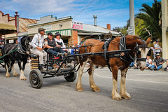 Mansfield Show 2015 (Dreamscope Photography) Tags: show muster mansfield 2015 moora rushwortheatershow