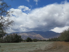 April 25, 2015 (5) (gaymay) Tags: california gay mountain love dogs clouds airplane happy desert palmsprings dogwalk triad