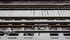 082/365: Unexpectedly white (dharder9475) Tags: winter snow monochrome spring cta railtracks chicagotransitauthority thirdrail 2015 365project 082365 privpublic