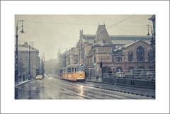 Un invierno que se acaba (pimontes) Tags: winter nieve budapest amarillo mercado invierno tranvía hss pimontes
