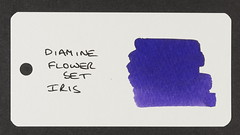 Diamine Flower Set Iris - Word Card