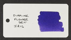 Diamine Flower Set Iris - Word Card