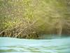 20140510-IMG_9920 (www.julkastro.co) Tags: trip sea beach mar colombia tour playa caribbean vacations vacaciones caribe islafuerte