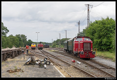 BE D12 - Sdrz 1003 (Bad Bentheim Nord) (Spoorpunt.nl) Tags: b juni und diesel v100 21 d graf bad eisenbahn ev ag be 12 221 modell 147 kiel nord mak trein 1003 201 münsterland d20 mec 240 125 mci asm 211 2014 v200 graafschap bentheim d21 sonderzug locomotief rijtuig historische maschinenbau 352 grafschafter arbeitsgemeinschaft schienenverkehr bentheimer b4i nebenbahnromantik eisenbahnclub grenzlandexpress
