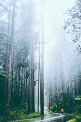 ☁️🌲🌲🌲☁️ (mouellic) Tags: travel blue light portrait sky woman art nature girl 35mm canon nude square landscape photography model top artists tumblr campvibes pnwcollective