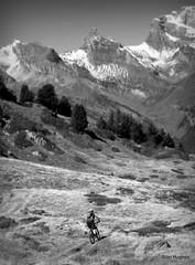 Autumn Riding around Verbier  (98) (Carl and Sian) Tags: orange alps switzerland mtb mountainbiking verbier singletrack orangefive bikeverbier alpinesingletrack carlandsian