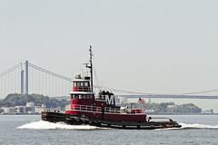 r_160721122_beat0043_a (Mitch Waxman) Tags: kimberlyturecamo moran newyorkcity newyorkharbor tugboat verrazanonarrowsbridge newyork
