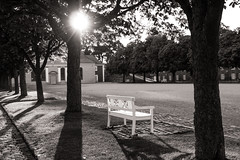 Happy to See the Sun (Niels A) Tags: copenhagen shadows church trees sun import20160730 kastellet bench