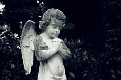 Engelskind (silkefoto) Tags: kln friedhof melaten engel figuren grber grab urne