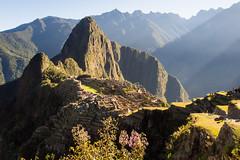 1/2 ..Le... Machu Picchu (geolis06) Tags: geolis06 prou peru per amriquedusud southamerica machupicchu machu picchu huaynapicchu patrimoinemondial unesco unescoworldheritage unescosite pachacutec inca emperor hirambingham em5olympus olympusm1240mmf28 montagne archeology archologie ande