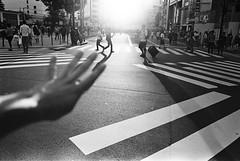 Shinjuku, Tokyo (fabiolug) Tags: light hand crossing shadow shinjuku people street streetphotography tokyo japan japanese asia leicamp leica mp rangefinder film filmphotography believeinfilm blackandwhite blackwhite bw kodaktrix400 trix400 kodak trix kodaktrix leicaelmarit28mmf28asph elmarit28mmf28asph elmarit28mm leicaelmarit28mm 28mm elmarit leicaelmarit wide wideangle
