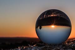 sunset - upside down (Borderli) Tags: crystalball ball kugel glaskugel sunset sonnenuntergang blendenstern upsidedown sommer summer